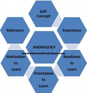 Adult andragogy learning principle