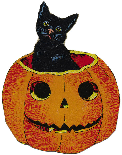 Vintage Halloween Greeting Card Black Cat In Jack O Lantern