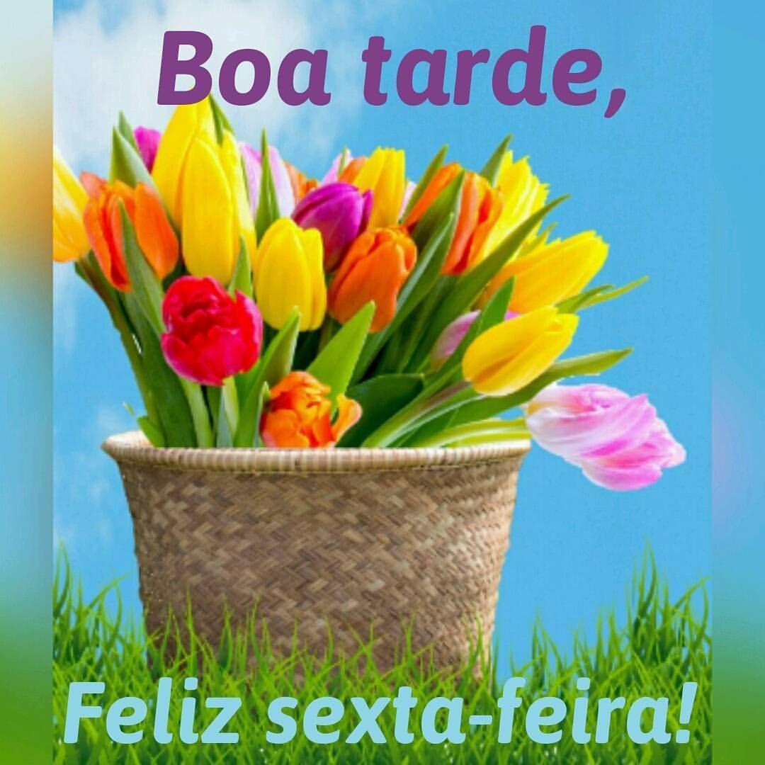 Boatarde Sextafeira Feliz Tardizinha Boa
