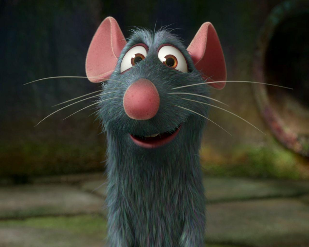 Ratatouille Photo: Ratatouille