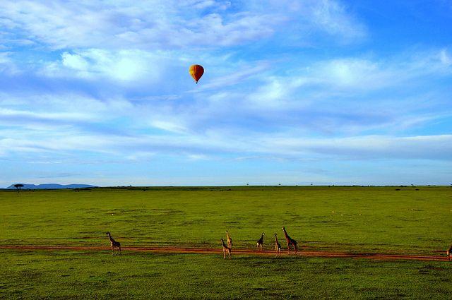 Hot Air Balloon Safari by Wajahat Mahmood, via Flickr