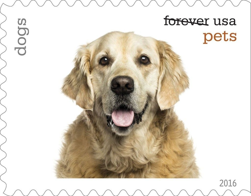 U S Postal Service Unveils New Pets Forever Postage Stamps With Images Postage Stamps Usa Stamps Stamp