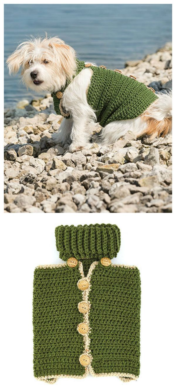 New dapper dog crochet pattern everyone deserves to stay warm new dapper dog crochet pattern everyone deserves to stay warm this winter including our four legged friends designed in three sizes this easy to put on bankloansurffo Image collections