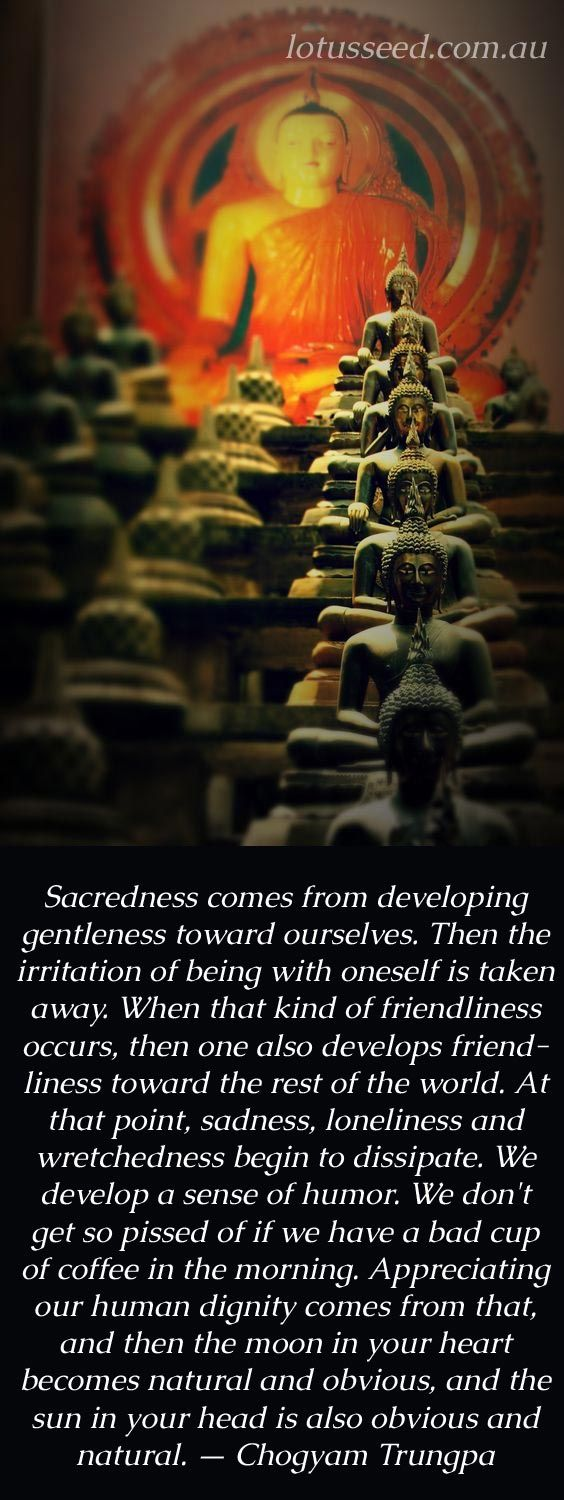 Zen Quotes On Life Chogyam Trungpa Buddhist Zen Quoteslotusseed.au  Empower