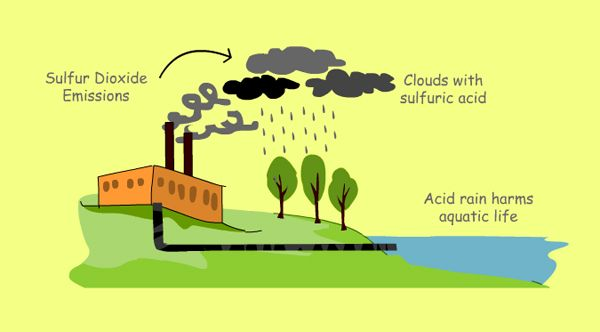 Air pollution cause and effect essay