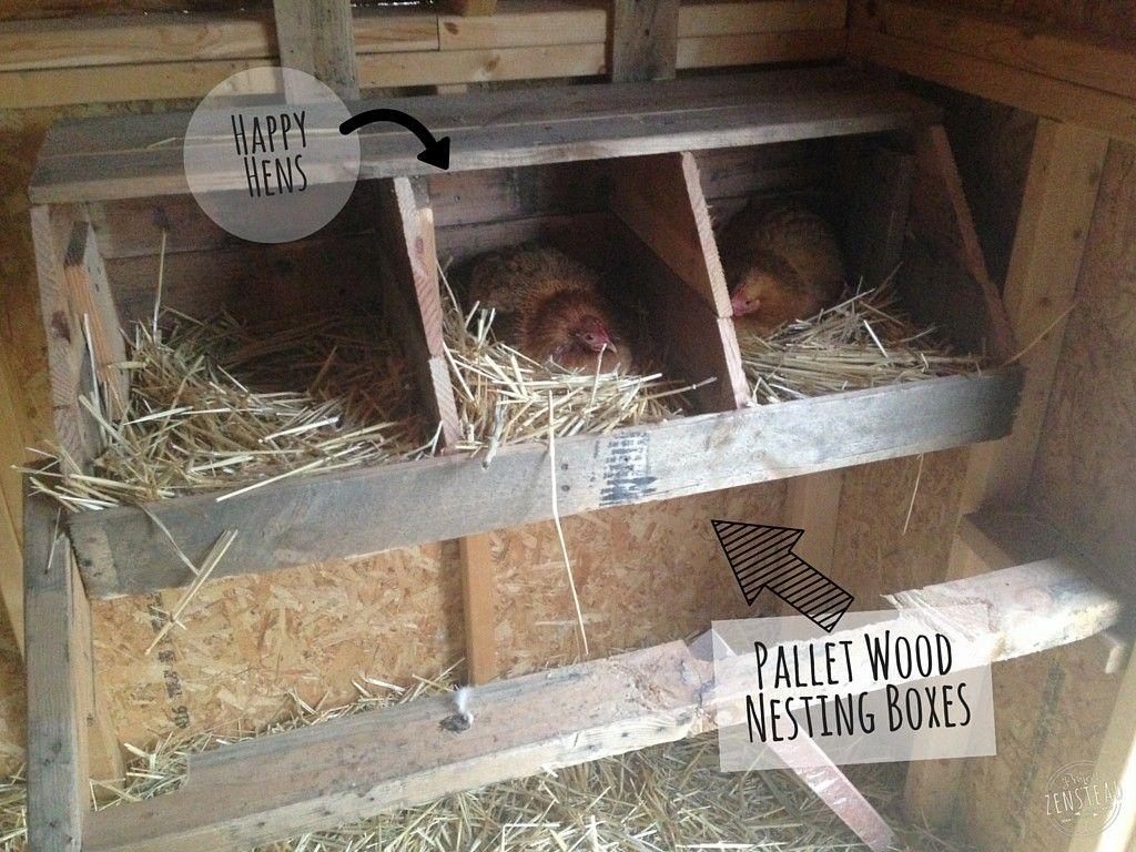 best 25 chicken coop pallets ideas on pinterest yard and coop