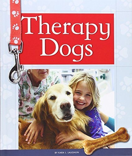 Therapy Dog Training How To Get Your Dog Certified Therapy Dog