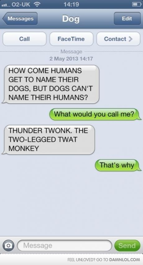 How Come Dogs Can T Name Their Humans Funny Dog Texts Dog