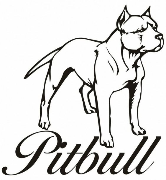 Pitbull Cartoon Drawing Puppy How To Draw A Dog Cute