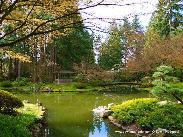 Center of Nitobe Memorial Garden. | Places | Pinterest