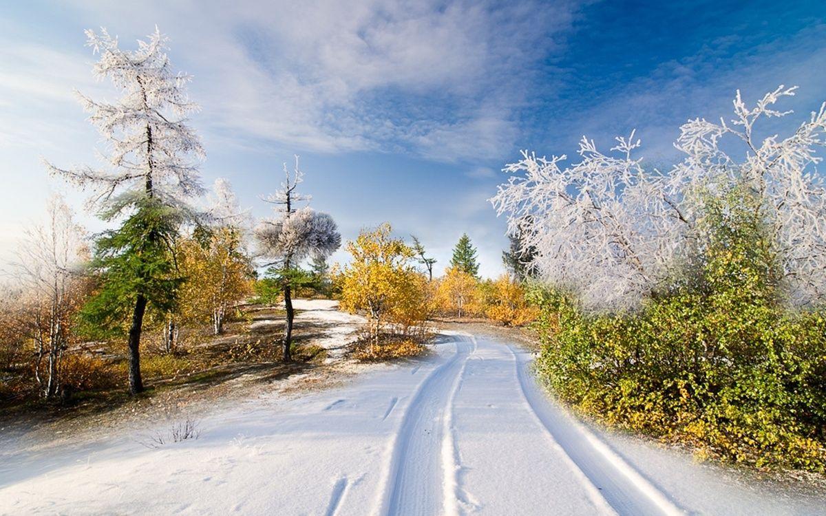 зимнее лето картинки пропустите возможность стать