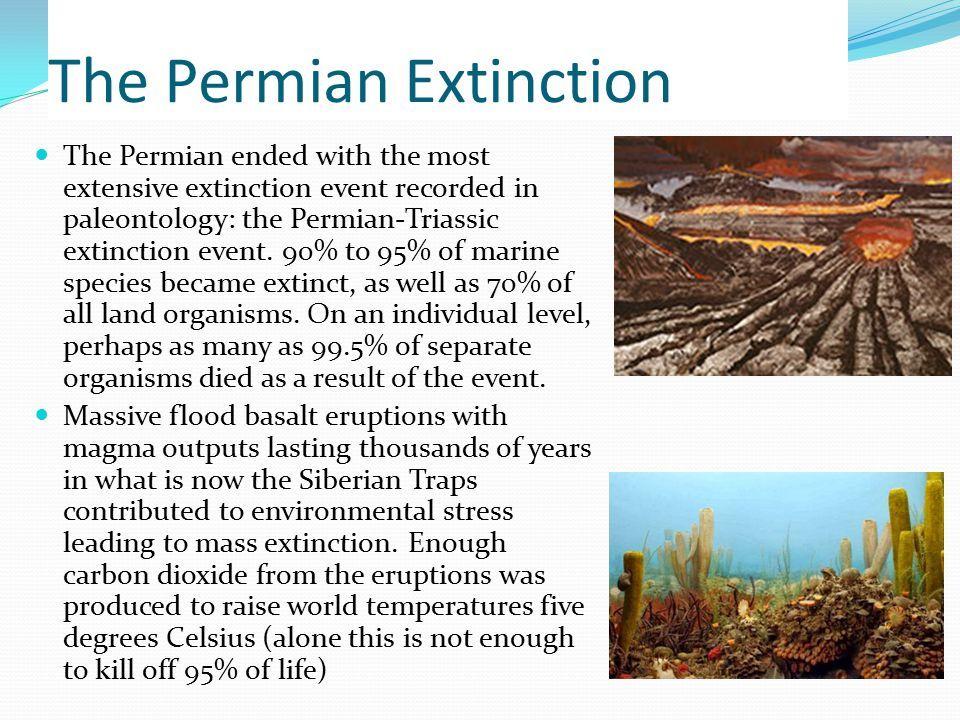 Permian–Triassic extinction event | Evolutions