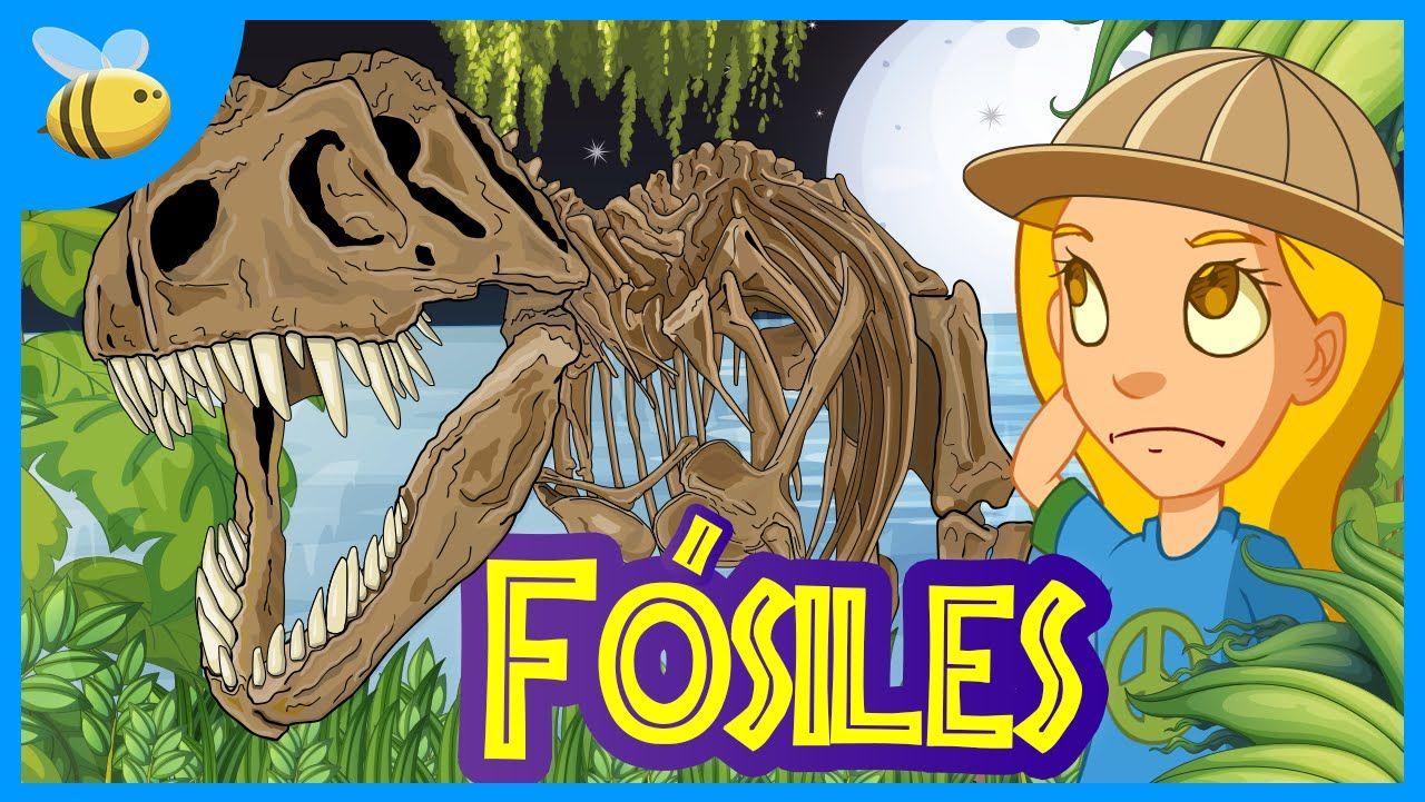 Qué son los Fósiles? | Videos Educativos para Niños | Proyecto ...