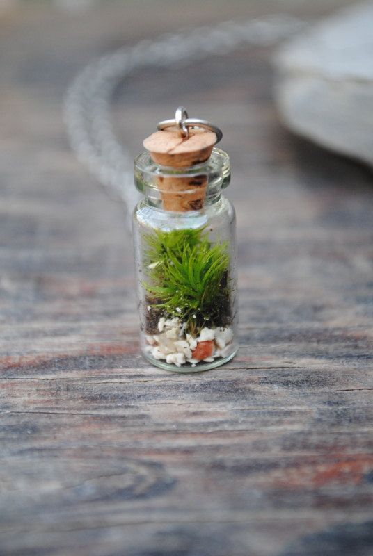 glass vial tiny nature pendant chain Real green moss handmade necklace