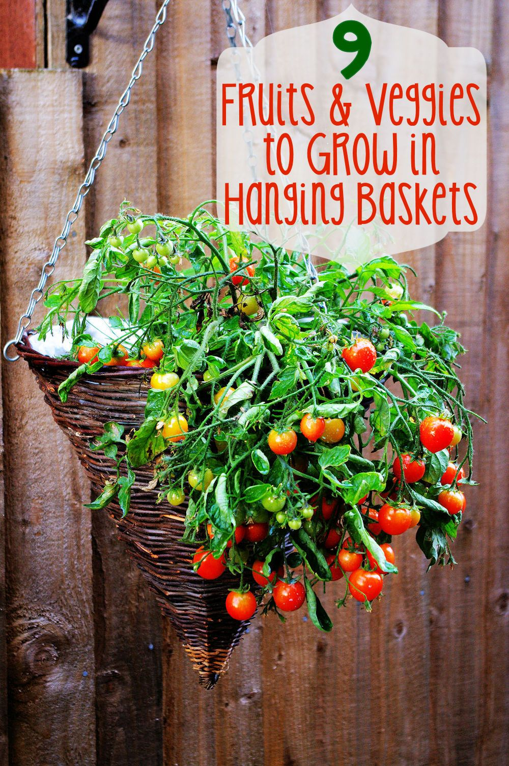 Hanging Basket Vegetable Garden Ideas