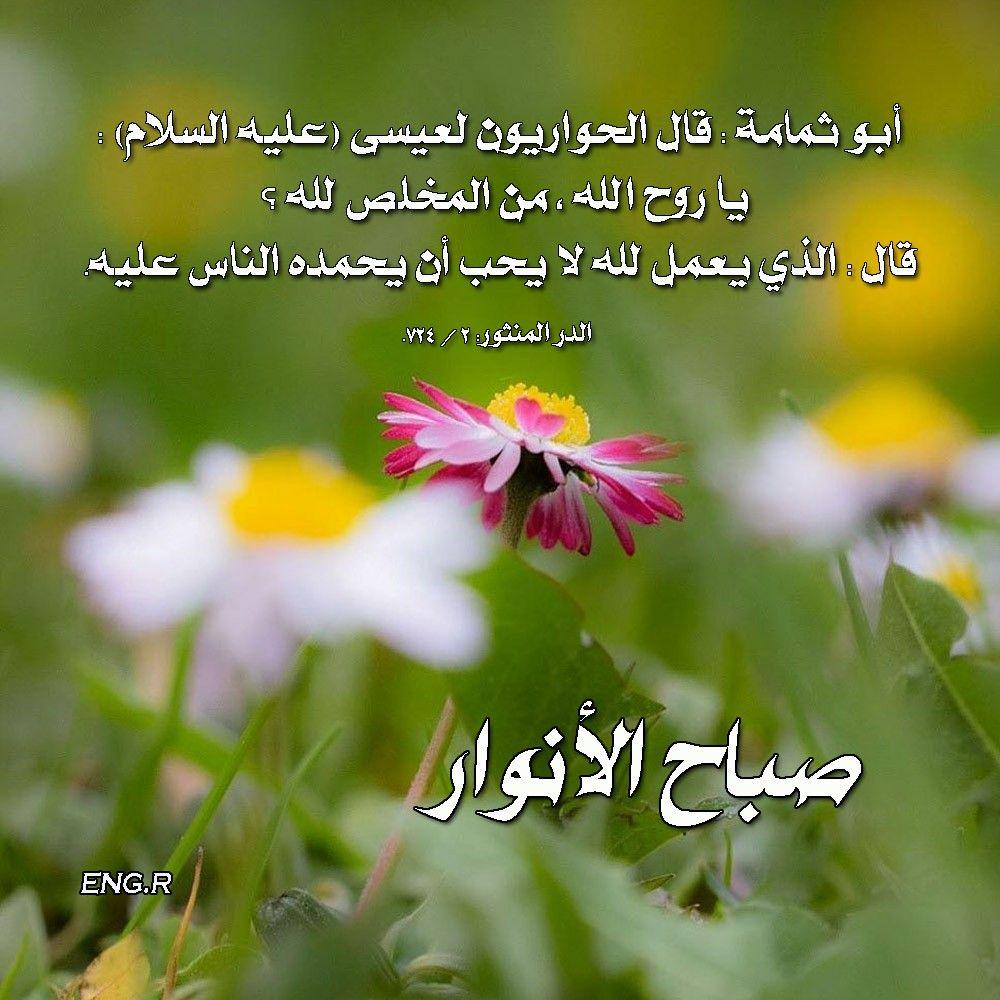 الايمان Imam Ali Quotes Ali Quotes Imam Ali