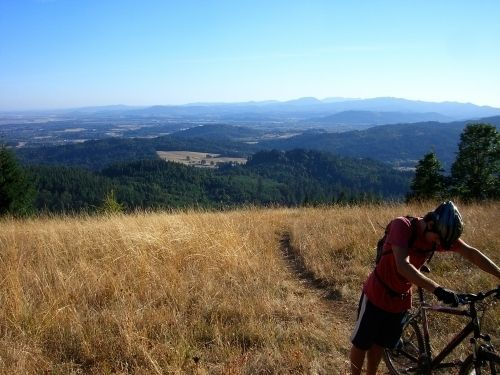Oak Creek To Dimple Hill Is A 3 Mile Heavily Trafficked Loop Trail