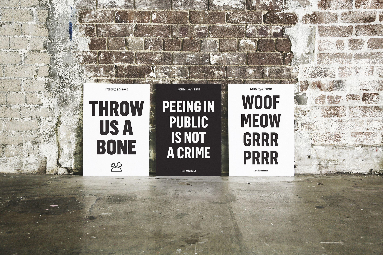 """다음 @Behance 프로젝트 확인: """"Sydney Dogs & Cats Home"""" https://www.behance.net/gallery/31072305/Sydney-Dogs-Cats-Home"""