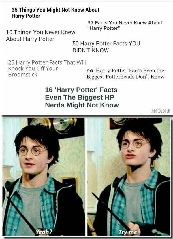 Pin by Charity on ✨ Harry Potter ⚡️ in 2019 | Harry