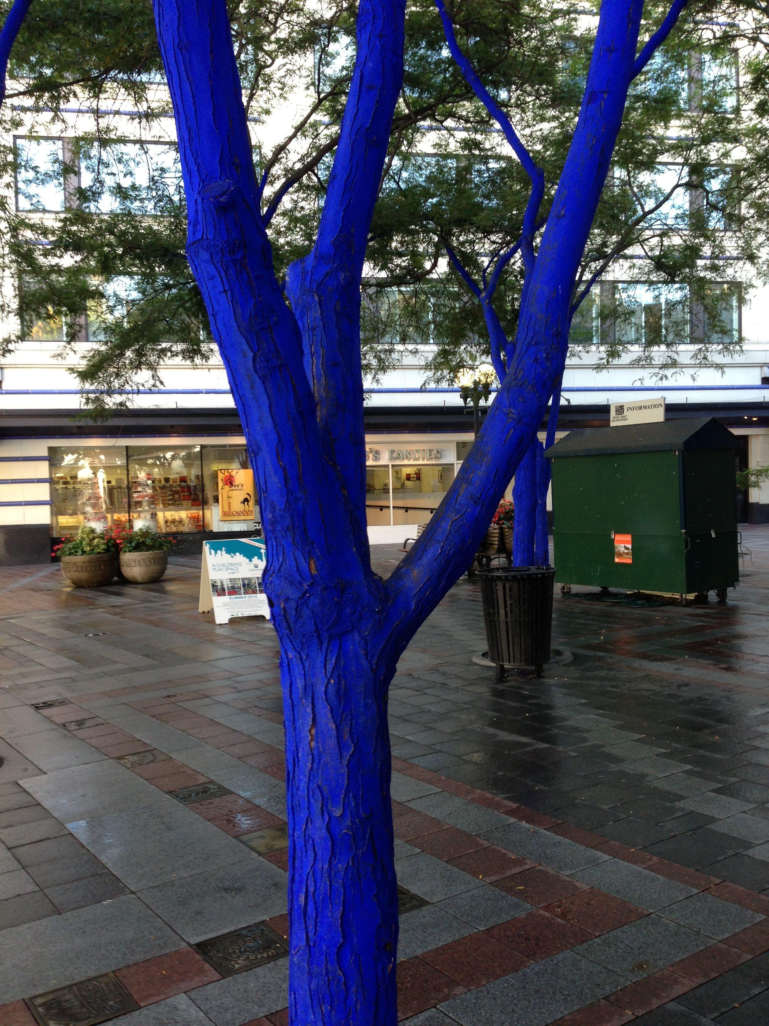 Blue tree at westlake park blue tree tree systems art