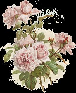 Клипарты цветы. Картинки для декупажа цветы. Цветы для ...