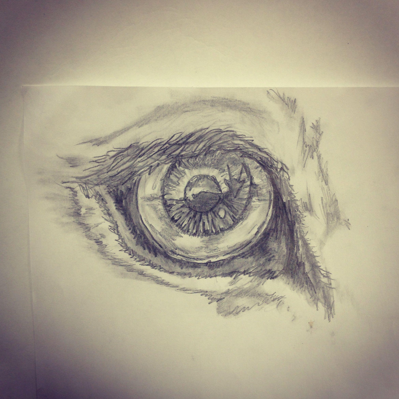 Sheldon s diy miata alignment page - Lion Eye Eyeing A Gazelle Tattoo Sketch By Ranz