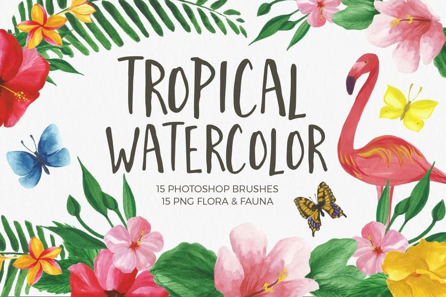 Free Watercolor Photoshop Brushes Css Author Photoshop Brushes