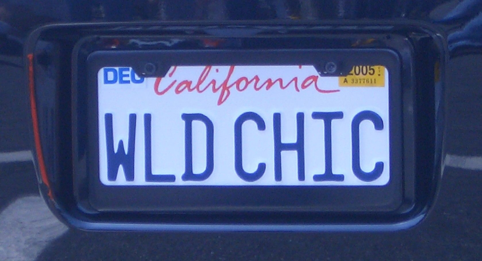Californian Licence Plate - WildChick | Viva! CALI~FORNIcAtion ...