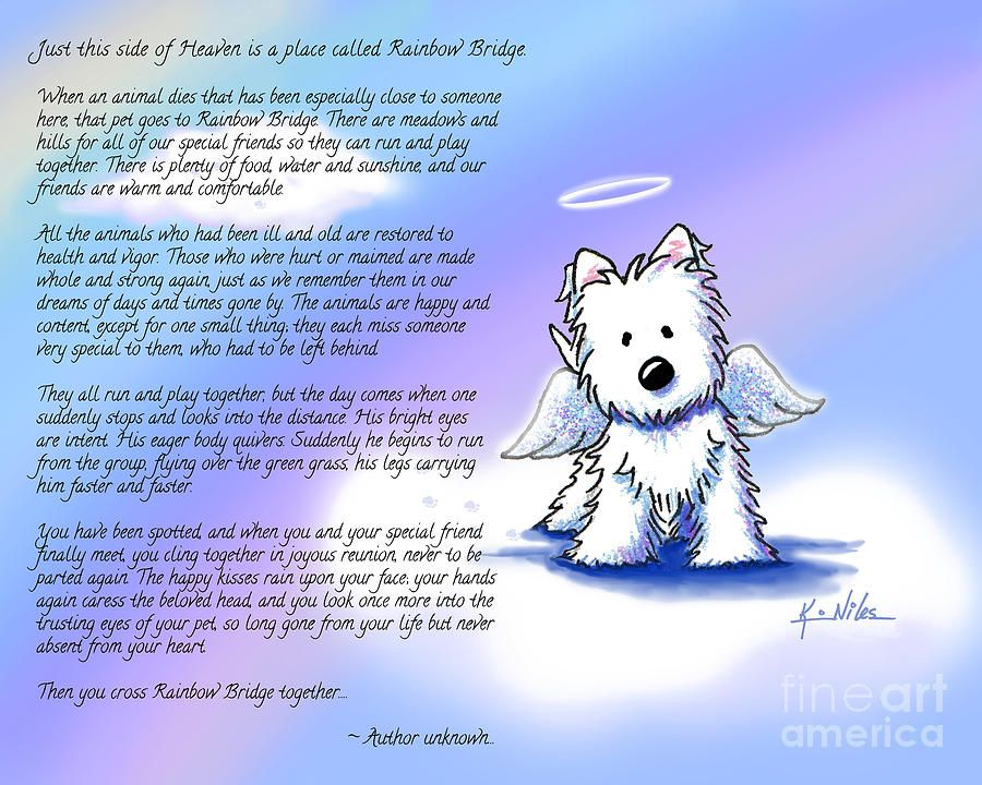 Return To Top Honor and celebrate your loving pet with a heartrendering poem about the Love and Faithfulness you shared together Insert a photo of your precious pet in the cutout provided just as you would with any frame