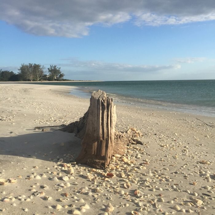 Why Englewood is One of Florida's Best Kept Secrets ...