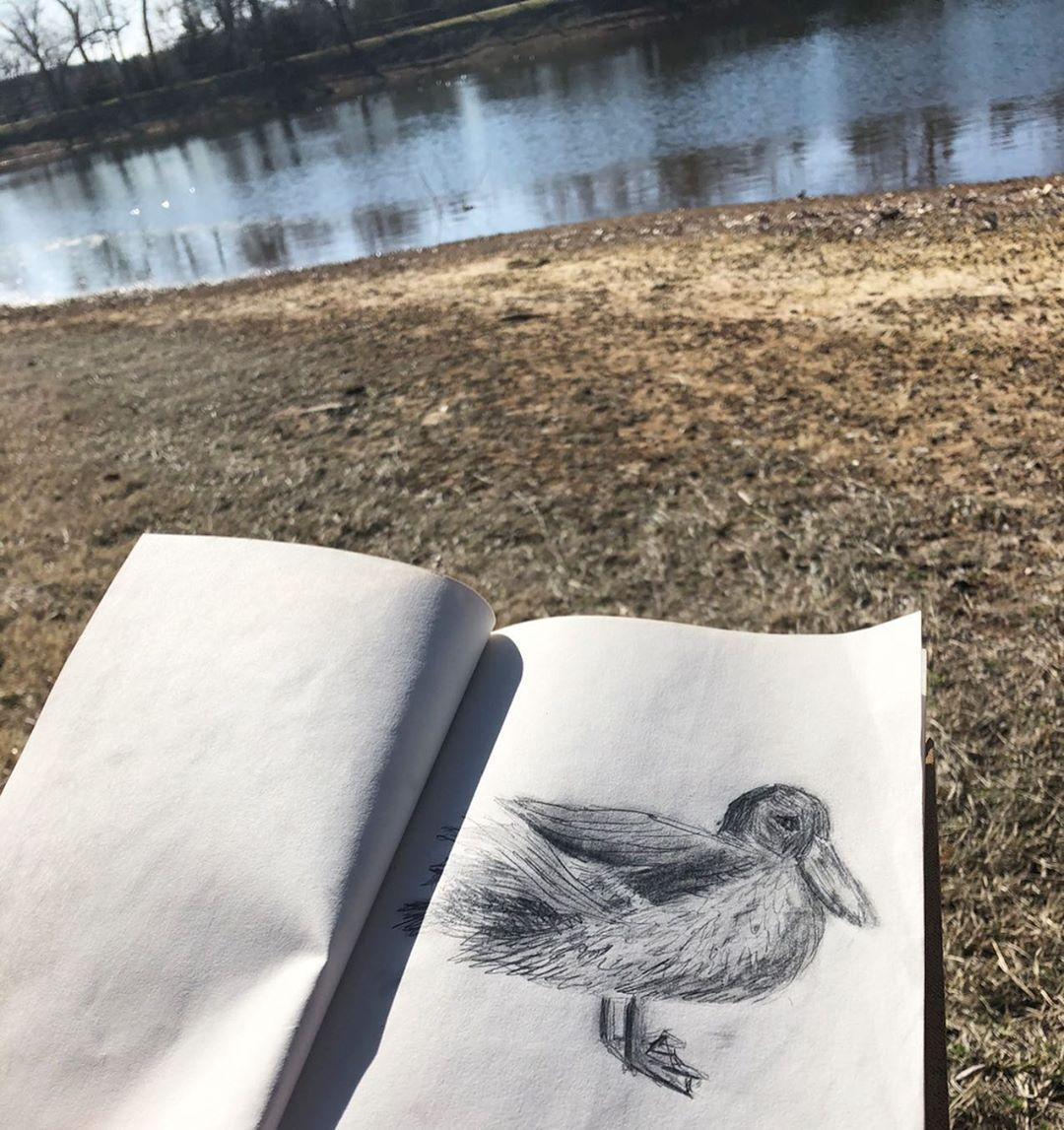 Trying to draw live ducks is very difficult, my friends. 😂 But at least the day today was nice! . . #birdsketch #birdsketches #drawing✏ #sketch #sketching #sketchbookdrawing #sketchbooks #pencildrawing #pencilsketch #pencilart #pencilartwork #blackandwhite #bird #birds #birdart #birddrawing #artistsoninstagram #art #artistsofinstagram #artistoninstagram #pencil #birdlovers #birdartwork #ducks #ducksketch #duckdrawing