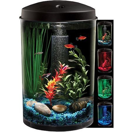Hawkeye 3 gallon 360 starter aquarium kit with led for 2 gallon betta fish tank