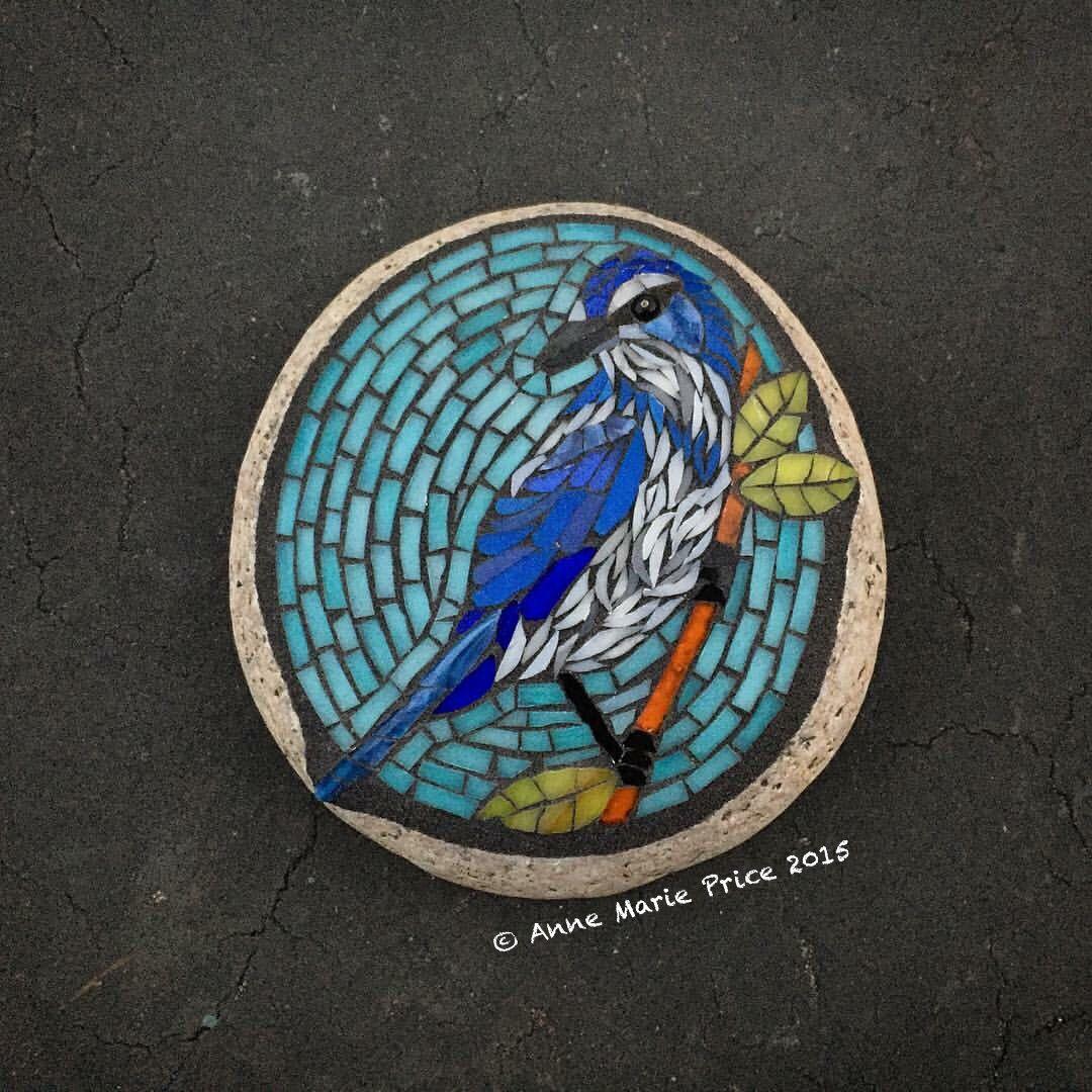 scrub jay mosaic on stoneanne marie price #mosaic #art