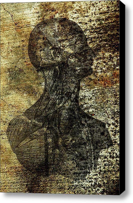 "New artwork for sale! - ""Vascular Man"" - http://fineartamerica.com/featured/vascular-man-gary-walker.html… @fineartamerica pic.twitter.com/15xoaC7fbP"