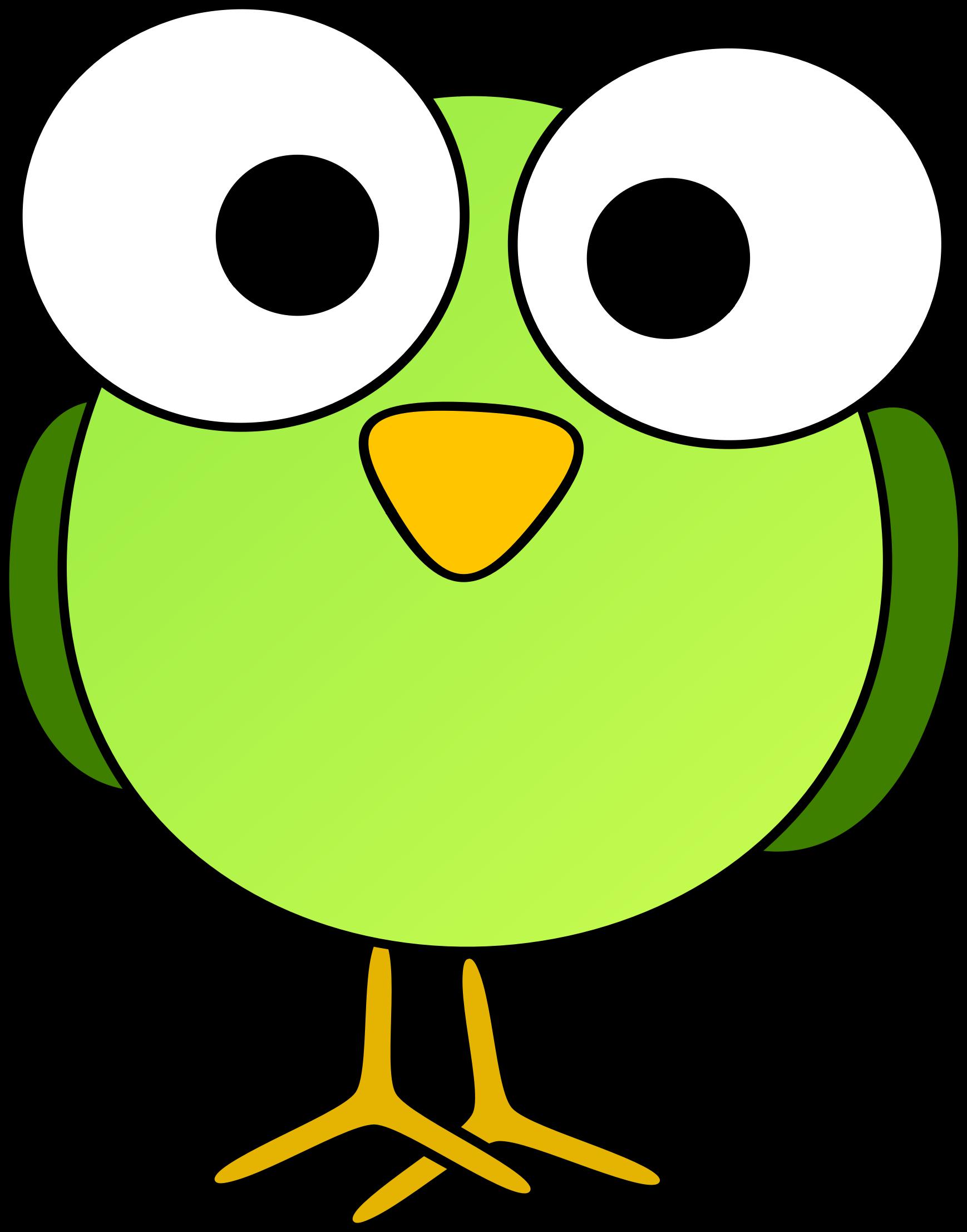 Green Googley Eye Bird Bird Clipart Rock Painting Designs Bird Drawings