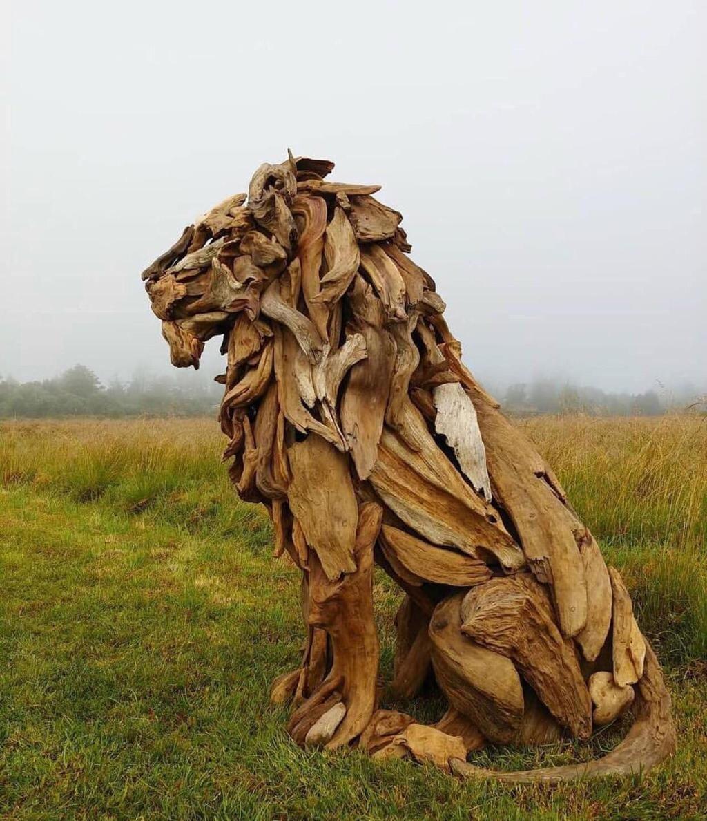 Driftwood Lion Lion Art Sculpture Art Driftwood Sculpture