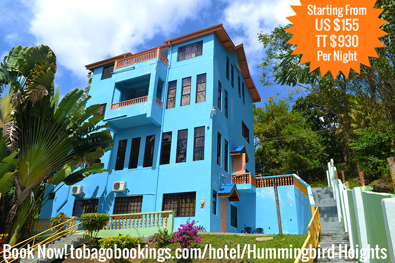 Vacation Apartment Of The Day Hummingbird Heights Quick Facts Price Starting From Us 155 Or Tt 930 Per Night Location Tobago Hotels Beach Room Trinidad