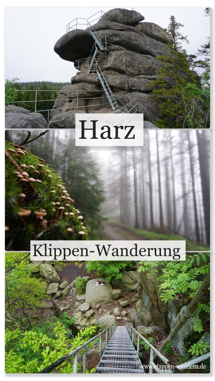 Klippen-Wanderung bei Schierke - Etappen-Wandern