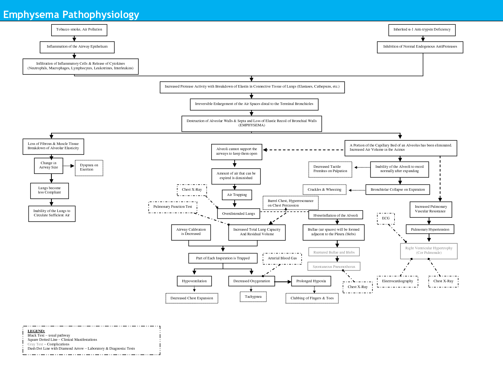 Pathophysiology Concept Map | Emphysema Pathophysiology ...