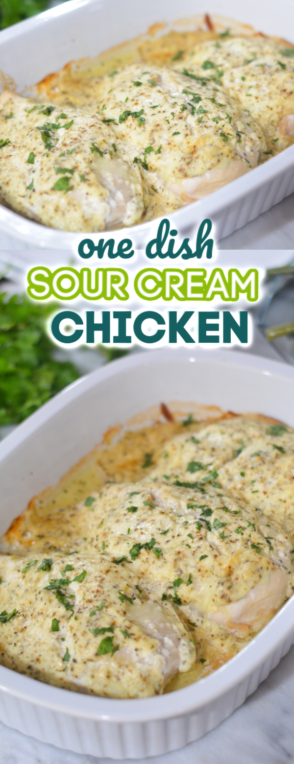 Easy Sour Cream Chicken Recipe
