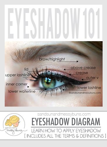 makeup 101 eyeshadow diagram for makeup newbies pinterest rh pinterest co uk simple eye makeup diagram eye diagram makeup application