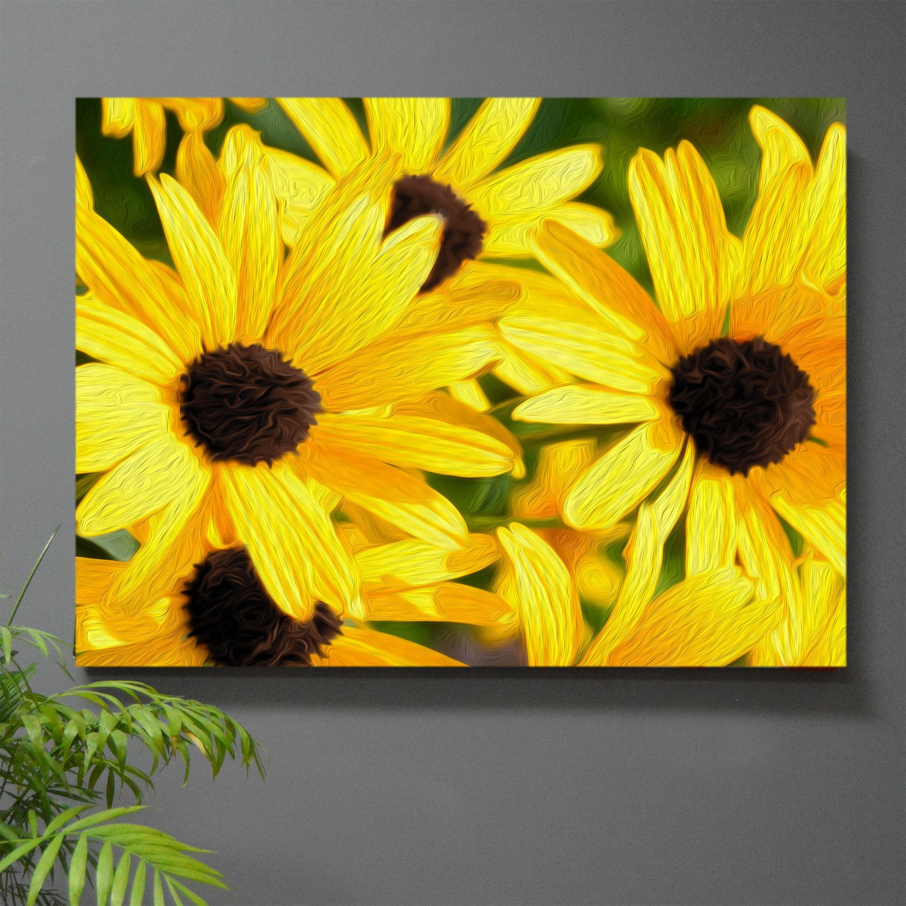 Black-Eyed Susie Stretched Canvas Wall Art   Black eyed, Canvases ...
