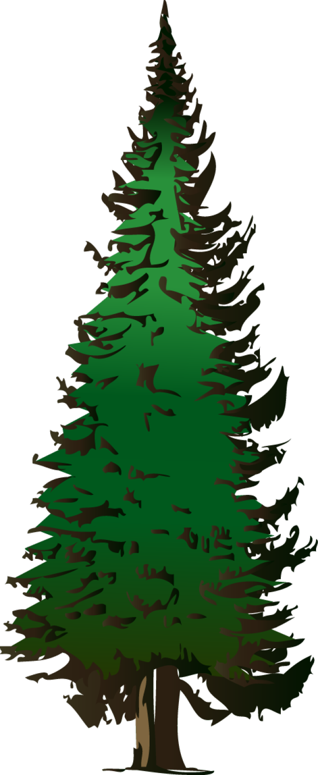 small resolution of free maple tree clip art design evergreen tree maple tree pine tree free