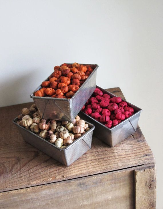 Dried Putka Pods 3 Color Mix A Wonderful Mix Of Natural Burgundy And Rustic Orange Putka Pods Color Mixing Color Pods