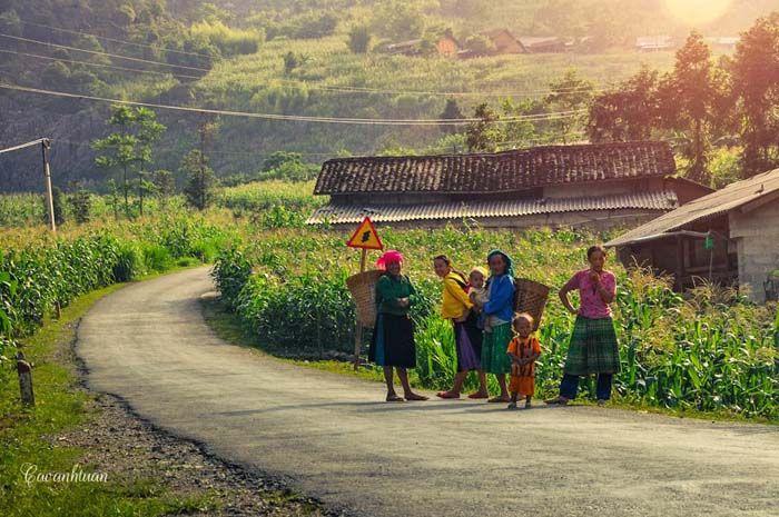 Ha Giang est une province montagneuse de l'extrême Nord Vietnam. C'est dans cette province que l'on trouve les paysages de montagne les plus spectaculaires du pays. En savoir plus >> http://hagiangvietnam.fr << #hagiang #hagiangvietnam #voyagerhagiang