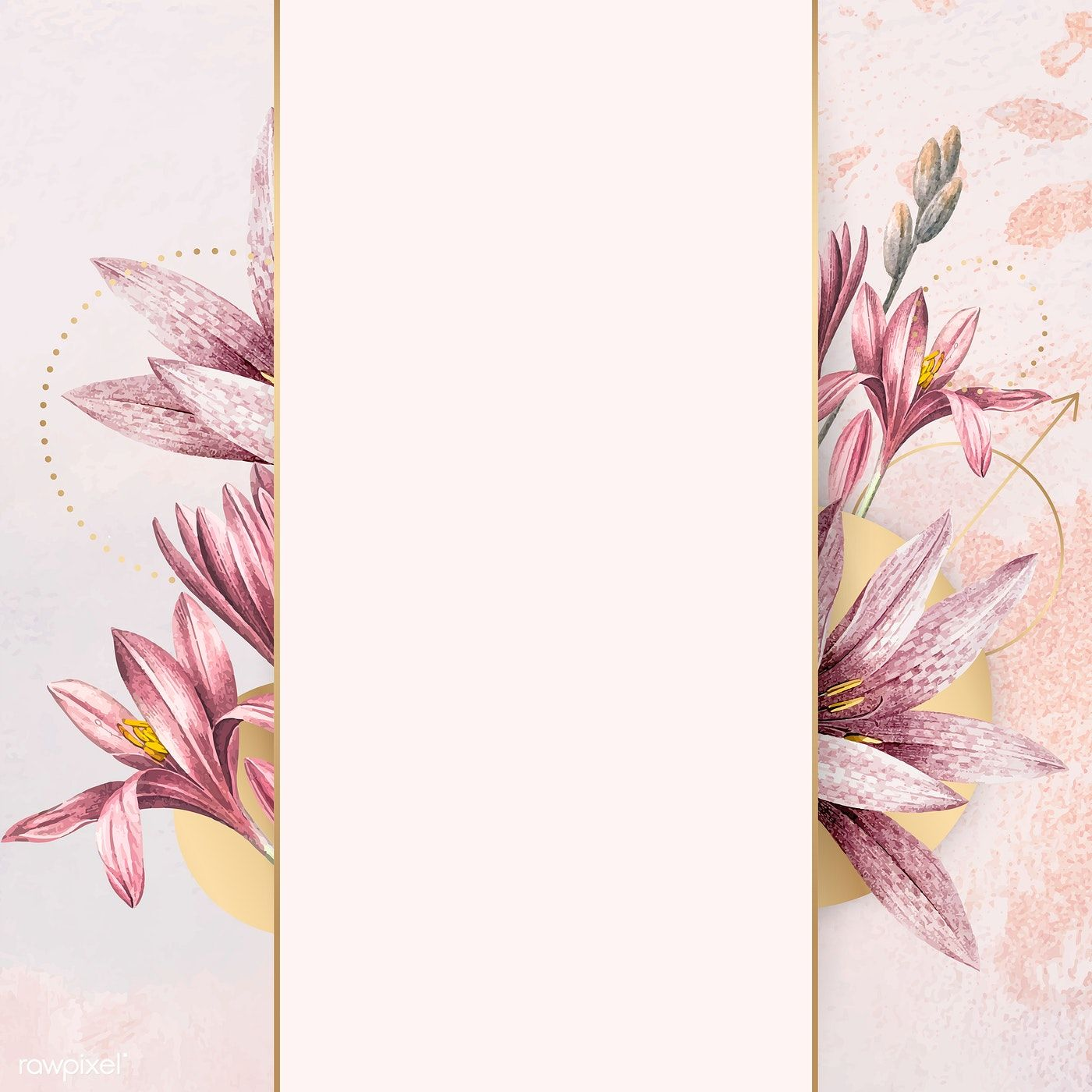 White Flower And Pink Background Vector Pink Flowers Background Flower Background Design White Flower Background