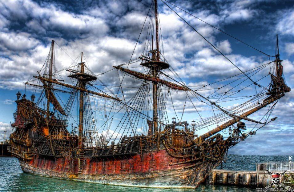 часто можно корабль месть королевы анны фото йоркширских терьеров