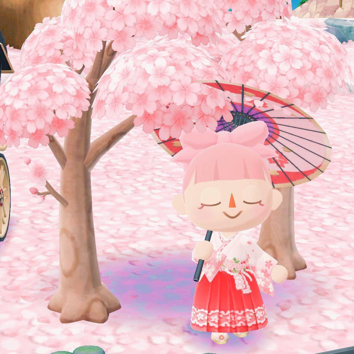 Cherry Blossom Time Katie Animal Crossing City Folk Animals