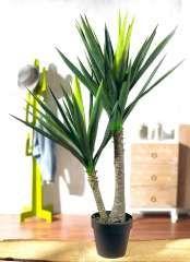 Http Www Decorado Shop Com Pflanzen Kunstpflanzen Palmen Yuccapalme Html Pflanzen Kunstpflanzen Schaufensterdekoration