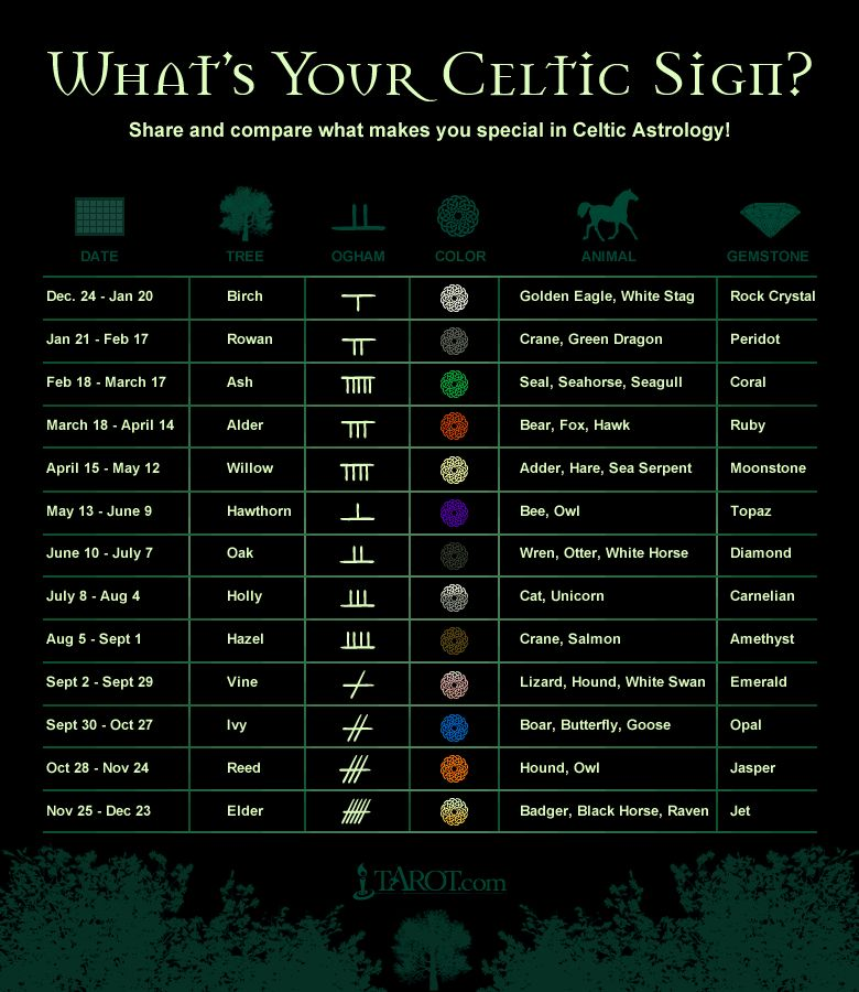 Celtic Astrology Pagan symbols - Pinned by The Mystic's Emporium on Etsy